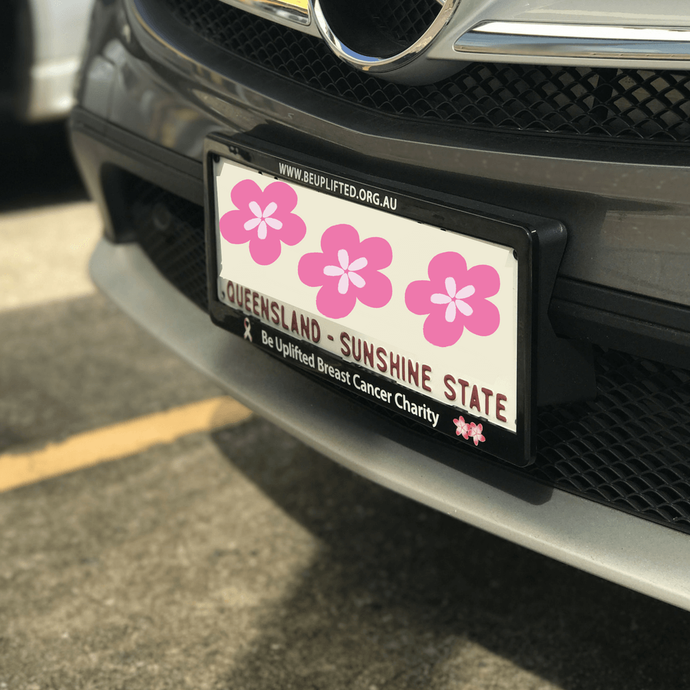 number_plate_cases